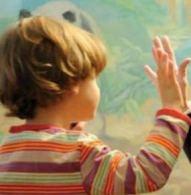bambino-davanti-a-un-vetro-neuropsichiatria-infanzia-adolescenza